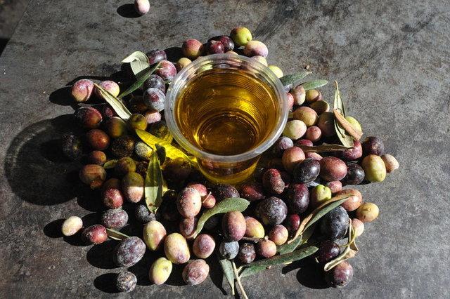 Zeytin çekirdeği yemenin faydaları!