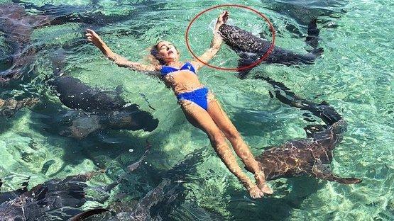 Bu fotoğraf için canından oluyordu! Ünlü model köpek balığı saldırısına uğradı