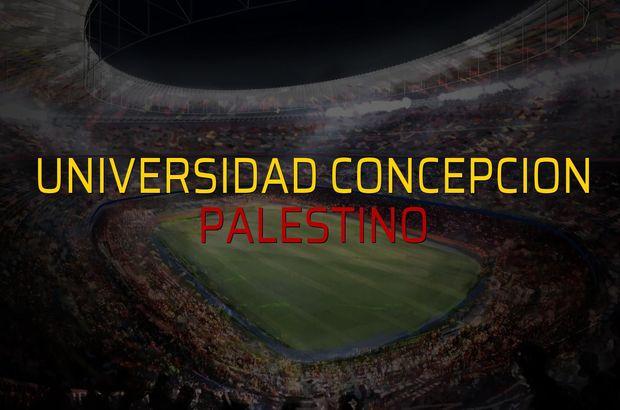 Universidad Concepcion - Palestino maçı istatistikleri