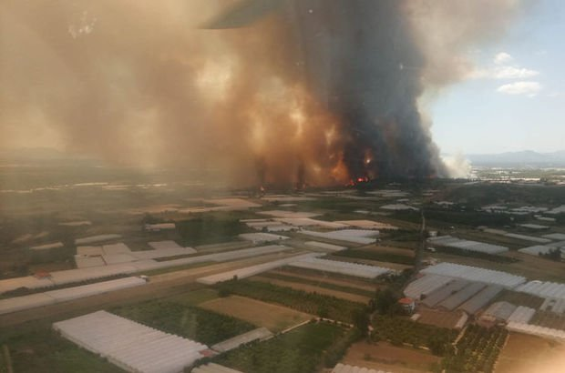 Son dakika: Antalya'daki orman yangını devam ediyor