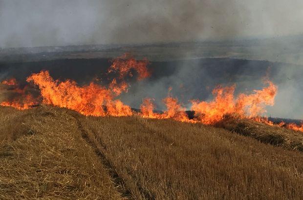 Silivri'de korkutan anız yangını