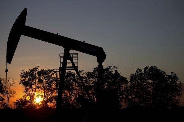 Petrol arama ruhsatı kararı