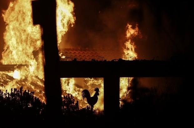 Yunanistan'da Atina yakınlarındaki orman yangınları büyüyor: En az 20 ölü