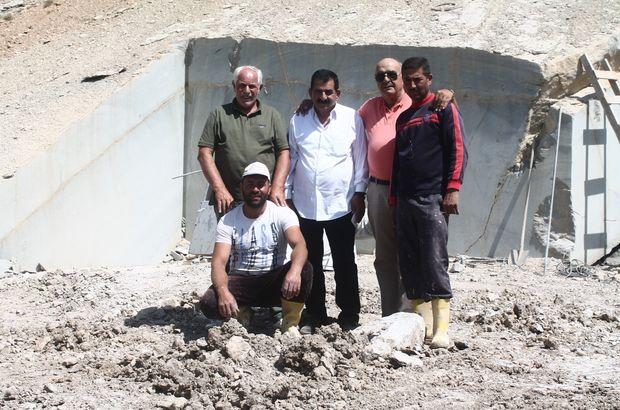 'Zeytin dalı'nın Balkanlar'a ihracatı başladı