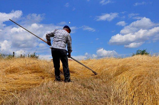 Çiftçilere 31 Temmuz uyarısı