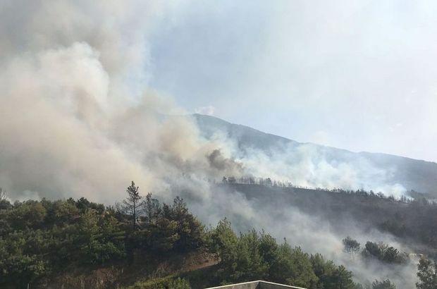 Son dakika: Hatay'da orman yangını! Havadan ve karadan müdahale ediliyor