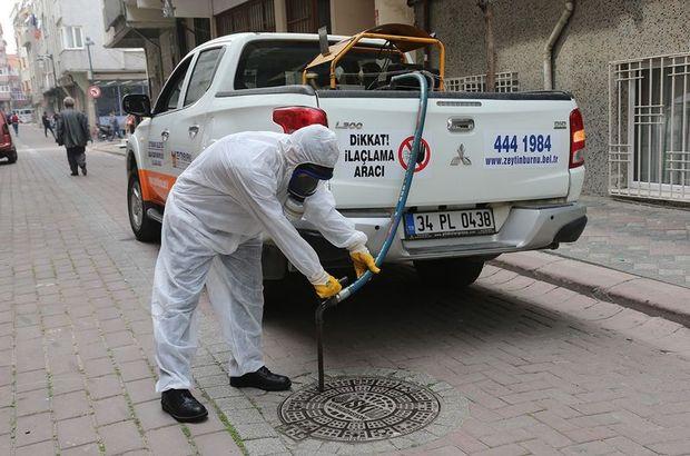 İstanbul'da sivrisinek istilası! İBB 'balıklı' savaş başlattı...
