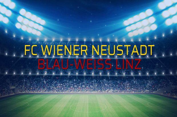 FC Wiener Neustadt - Blau-Weiss Linz maç önü