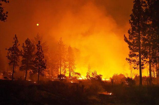 California'daki yangınlar 50 bin kişiyi evinden etti, 5 kişi hayatını kaybetti