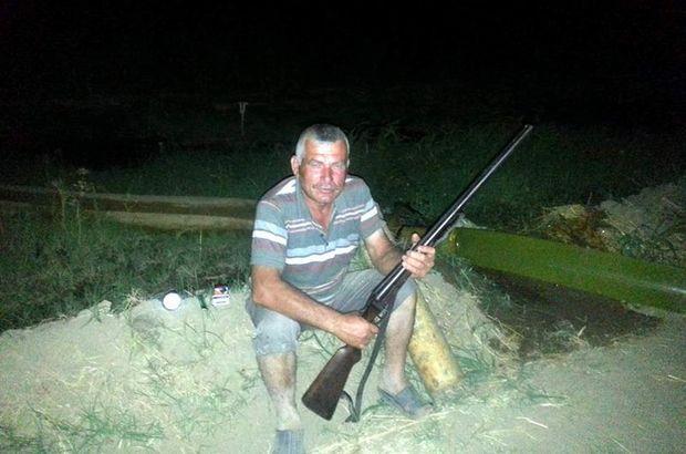 Aydın'da domuzlar, çiftçinin uykusunu kaçırdı
