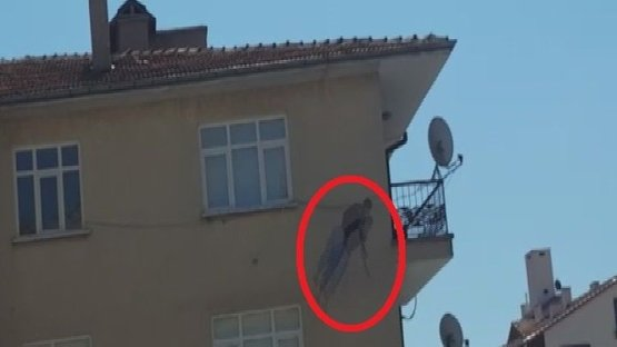 Çatıda uyuduğu iddia edildi! Aşağı böyle düştü