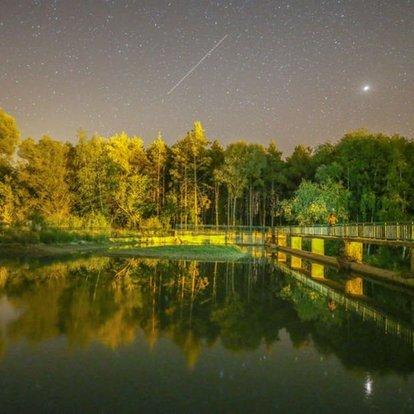 Van, gece, manzara, yeşil, gölet
