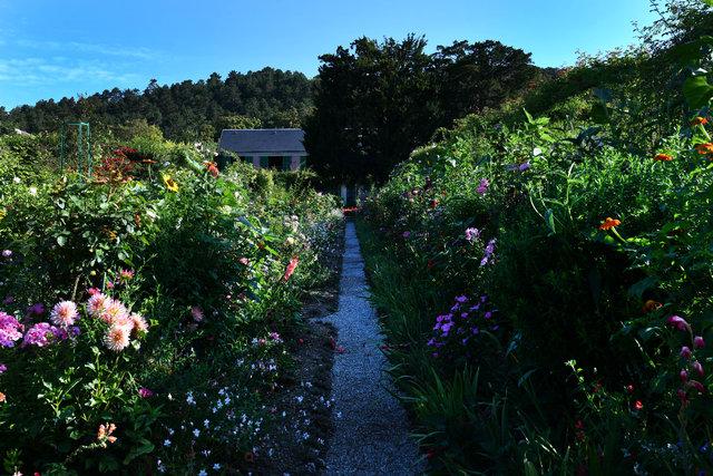 Monet'in ilham bahçesine turist akını