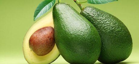 """Avokado nasıl yetiştirilir? İşte """"Avokado nasıl ekilir?"""" sorusunun yanıtı"""