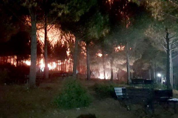 Düğünde atılan havai fişek ormanı yaktı