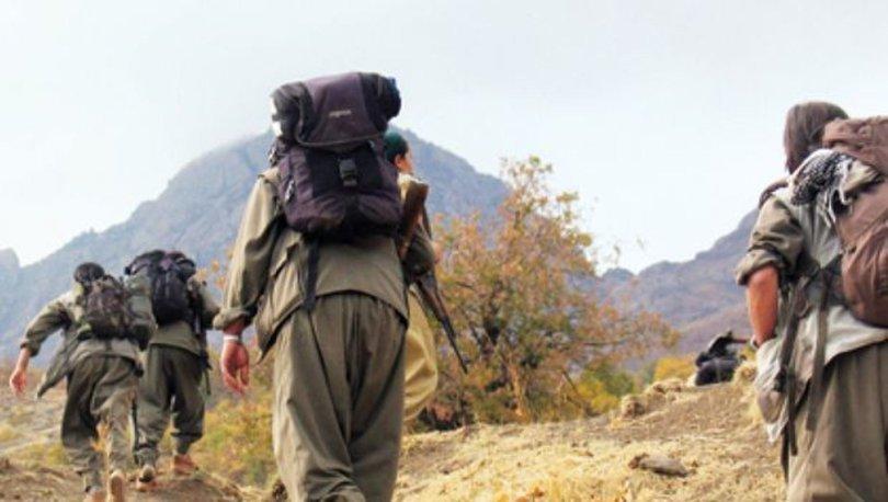 Ağrı Dağı'nda terör operasyonu