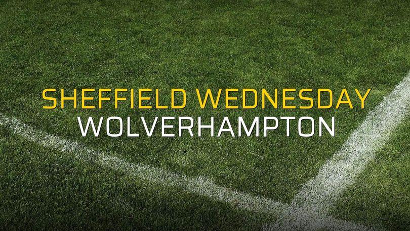 Sheffield Wednesday - Wolverhampton maçı heyecanı