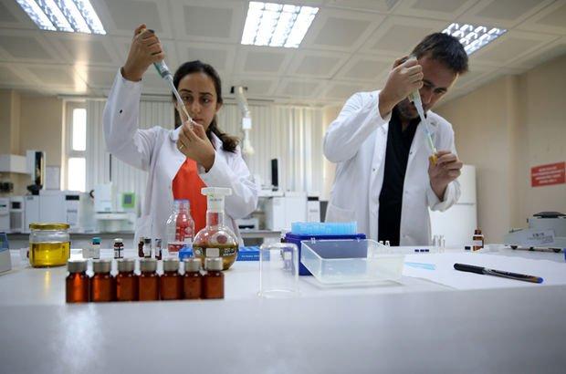 Tıbbi ve aromatik bitki üretimi