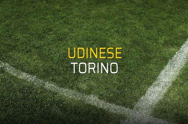 Udinese - Torino maçı rakamları