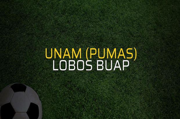 UNAM (Pumas) - Lobos BUAP maçı öncesi rakamlar