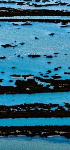 Türkiye'nin el değmemiş doğasını havadan fotoğrafladı!
