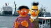 Susam Sokağı: Edi ile Büdü eşcinsel çift değil