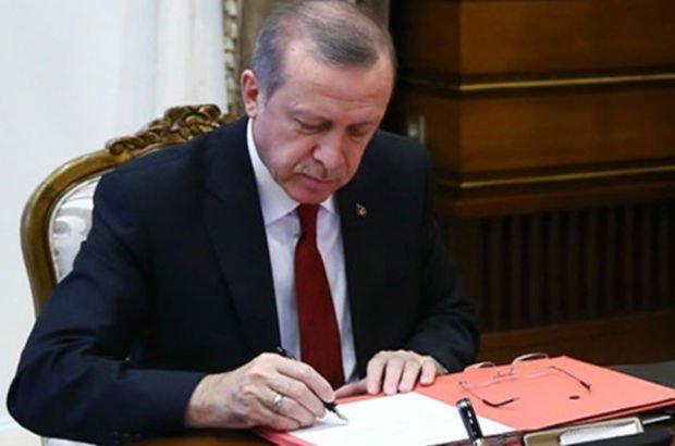 Cumhurbaşkanı Erdoğan makale