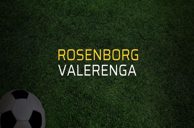 Rosenborg - Valerenga maçı rakamları