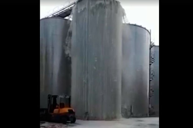 treviso şarap fabrikası