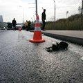 TEM'de 'kedi'li zincirleme kazası!