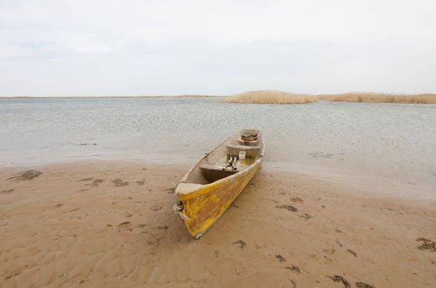 Aral gölü,