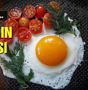 11 Ekim Dünya Yumurta Günü olarak tanınıyor. Bu gün öncesinde Diyetisyen Sibel Mumcu yumurtanın faydalarını anlattı. Üstelik bugüne dek duymadığımız bir faydasından daha söz ederek... Diyetisyen Mumcu, yumurtanın yaraların iyileşmesinde oldukça önemli rol oynadığını söyledi
