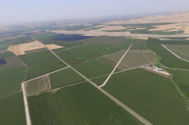 Aydın: Tapuda hedef 8,5 milyon hektar