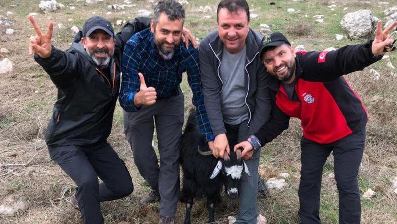 Dağda 4 gündür mahsur kalan 2 keçi operasyonla kurtarıldı!