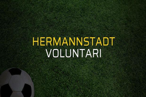 Hermannstadt - Voluntari maçı heyecanı