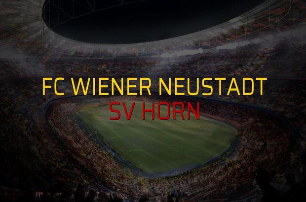 FC Wiener Neustadt - SV Horn karşılaşma önü