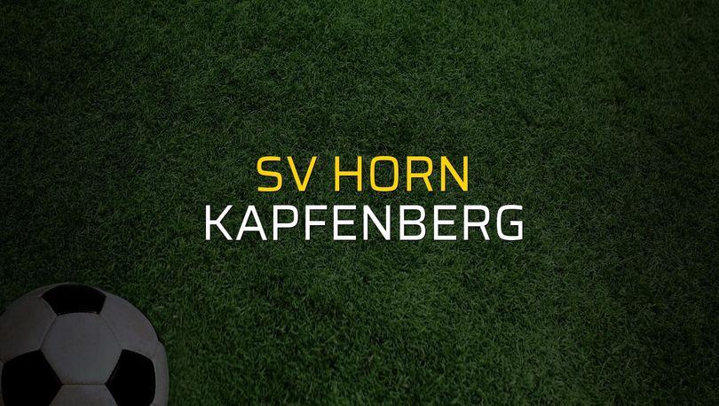 Maç sona erdi: SV Horn: 2 - Kapfenberg:2