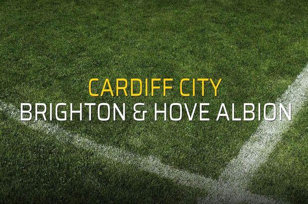 Cardiff City: 2 - Brighton & Hove Albion: 1