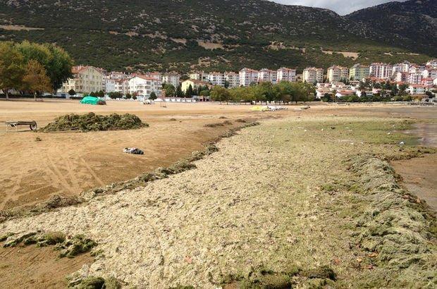İskele ortada kaldı! Göl adeta boşaltıldı...