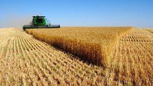 Tarım-ÜFE Ekim'de arttı