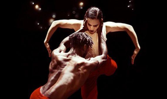 Nederlands Dans Tiyatrosu