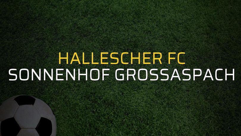 Hallescher FC - Sonnenhof Grossaspach maçı öncesi rakamlar