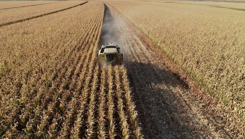 Tarımsal üretim