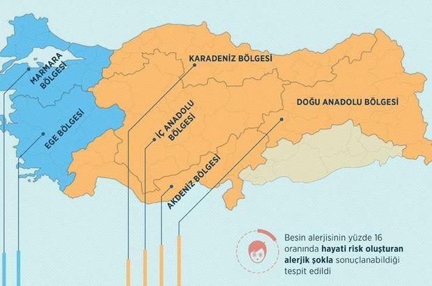 Türkiye'nin besin alerjisi haritası