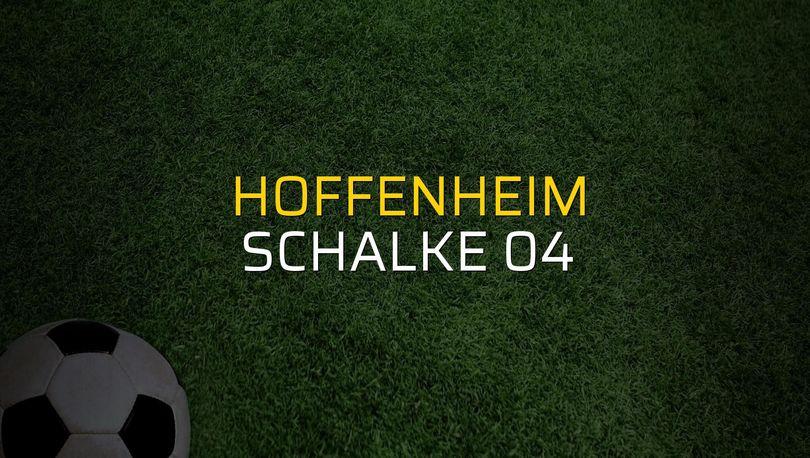 Hoffenheim: 1 - Schalke 04: 1