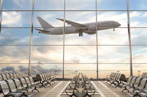 Hava yolu yolcu sayısı