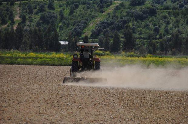 Çiftçilerin yüzde 82'si Hazine arazilerine talip oldu