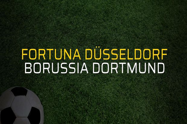 Fortuna Düsseldorf - Borussia Dortmund maçı istatistikleri
