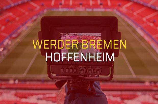 Werder Bremen - Hoffenheim rakamlar