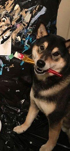 Ressam köpek sahibine binlerce dolar kazandırdı